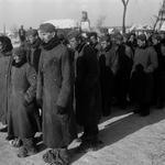 2 февраля 1943 года, 73 года назад, закончилась Сталинградская битва
