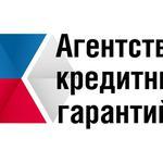 Агентство кредитных гарантий