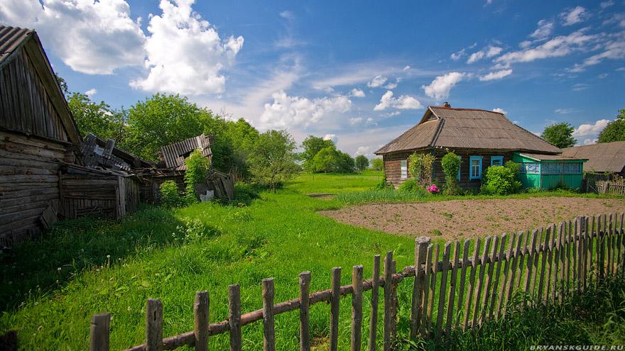 картинки село