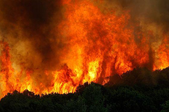 Пожары скачать торрент