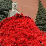 Сталин цветы