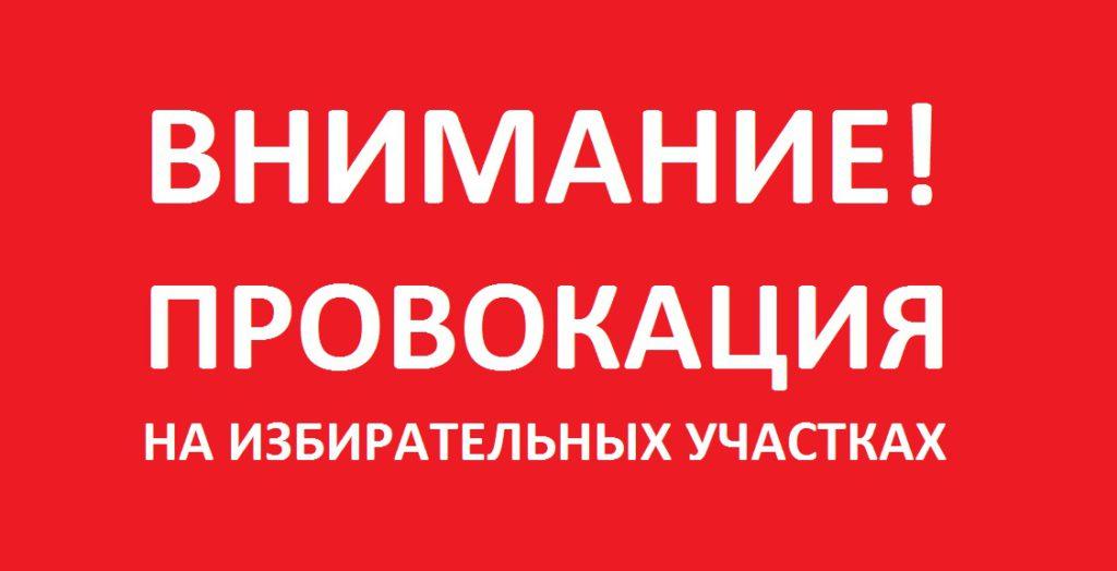 Листовка в УИК против Павла Грудинина
