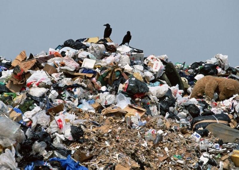 Вопрос о вывозе мусора